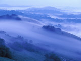 View of the Minkebe Forest Blanketed in Mist Photographic Print by Michael Nichols