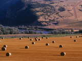 Bales of Hay in a Farmers Field Photographic Print by Kate Thompson