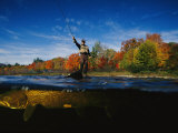 Sport Fisherman and his Atlantic Salmon Prey Photographic Print by Paul Nicklen