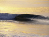 Sunrise Shines on a Breaking Wave Photographic Print by Rich Reid
