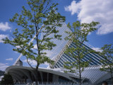 Exterior View of the Quadracci Pavilion at the Milwaukee Art Museum Photographic Print by Paul Damien