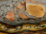 Detail of Eroded Rocks Swirled with Colors and Patterns Photographic Print by Charles Kogod