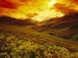 Fiery Sunset over the Ogilvie Mountains Photographic Print by Paul Nicklen