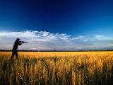Mallee Farmer, Quail Shooting in Wheat Stubble - Mallee, Victoria, Australia Photographic Print by John Hay