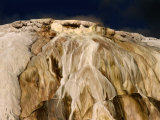 Canary Springs at Mammoth Hot Springs, Yellowstone National Park, Wyoming, USA Photographic Print by Carol Polich