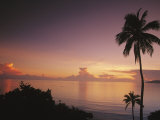 Palm Trees Silhouetted against Sky and Ocean at Sunrise Photographic Print by Mark Cosslett