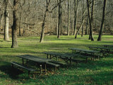 Green Picnic Tables and Benches in a Clearing Near Hardwood Trees Photographic Print by Raymond Gehman