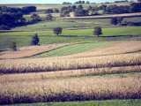 Hollandale, Farm View, Wisconsin Photographic Print by Walter Bibikow