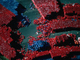 Aerial View of Thousands of Red and Blue Crates in a Storage Depot, Melbourne, Australia Photographic Print by Rodney Hyett