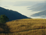 Mountain Biking Through Fields Above Fog-Shrouded Elk River Valley Photographic Print by Skip Brown