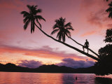 Man, Palm Trees, and Bather Silhouetted at Sunrise Photographic Print by Mark Cosslett
