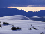 Grass Clunps on Sand Dunes, White Sands National Monument, USA Photographic Print by John Elk III
