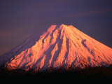 Mt. Ngauruhoe Illuminated in Sunlight, Tongariro National Park, Manawatu-Wanganui, New Zealand Stampa fotografica di David Wall