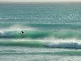 Surfer Rides a Wave in Barbados Stampa fotografica di Brown, Skip