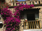 Bougainvillea Flowers on the Balcony of an Old Building in Taxco Photographic Print by Gina Martin