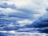 Airplane in Cloudy Blue Sky Photographic Print by Lonnie Duka