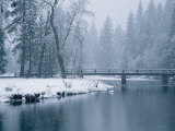 Winter View of the Merced River Photographic Print by Marc Moritsch