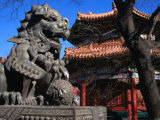 Lion Statue at Lama Temple Bejing, China Photographic Print by Glenn Beanland