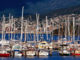 Yachts Moored at Bellerive Marina, Tasmania, Australia Photographic Print by Grant Dixon