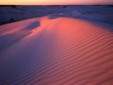 Sand Dunes, Nambung National Park, Western Australia, Australia Photographic Print by Rob Blakers