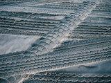 4Wd Tyre Tracks on Sand, Fraser Island, Queensland, Australia Photographic Print by Tony Wheeler