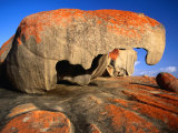 Granite Corestones Covered in Orange Lichen Flinders Chase National Park, Kangaroo Island Photographie par Barnett Ross