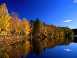 Autumn Lakeside Trees, Halland, Sweden Photographic Print by Anders Blomqvist
