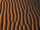 Patterns in Desert Sand, Merzouga and the Dunes, Morocco Photographic Print by Frances Linzee Gordon