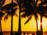 A Waikiki Winter Sunset, Honolulu, Oahu, Hawaii, USA Photographic Print by Ann Cecil