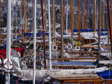 Charter Boats in Marina, Bodrum, Turkey Photographic Print by Peter Ptschelinzew