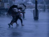 Typhoon Force 8 Hits Pedestrians in the Street, Kowloon, Hong Kong, China, Fotografisk trykk av Phil Weymouth