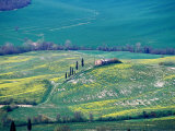 Classic Tuscan Scenery on Outskirts of Historic Town of Pienza, Pienza, Italy Photographic Print by Glenn Beanland