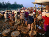 Crowds of People with Baskets at Early Morning Fish Market, Hoi An, Quang Nam, Vietnam Photographic Print by Anders Blomqvist