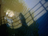 Shadow of a Person Walking Across Bridge on Canal Water, Amsterdam, Netherlands Photographic Print by Martin Moos