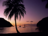 Marigot Bay, St. Lucia Photographic Print