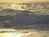 Onda dell'oceano, Playa Del Carmen, Messico Stampa fotografica di Keith Levit