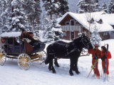 Stagecoach at Ski Tip Ranch, CO Photographic Print by Bob Winsett