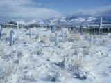 A Dramatic Winter Scene of a Snow-Covered Graveyard Photographic Print by David Boyer