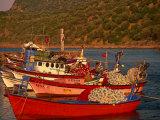 Fish Boats on Wharf, Assos, Turkey Photographic Print by Walter Bibikow