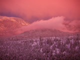 Lake Tahoe at Sunset with Snow, California Photographic Print by Wayne Hoy