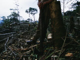 A Man with an Axe Rests against a Stump in a Destroyed Landscape Photographic Print by Maria Stenzel