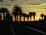 Sunset on Tram Tracks of St. Kilda Esplanade, Melbourne, Australia Photographic Print by John Banagan