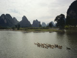 Ducks Swimming in the Li River with Karst Formations in the Background Photographic Print by Luis Marden