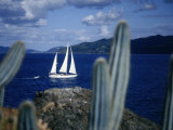 Sailboat, Baja, Mexico Photographic Print by John Connell