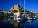 The Harbour and Citadel, Bonifacio, Corsica, France Photographic Print by David Tomlinson