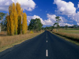 Back Road Between Uralla and Walcha New England National Park, New South Wales, Australia Photographic Print by Barnett Ross
