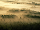 Early Morning Sunlight Beams Through the Fog That Shrouds the Boundary Waters Photographic Print by Raymond Gehman