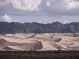 The Hongorin Els Dunes in the Gobi Desert Photographic Print by Dean Conger