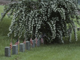 Union Army Tombstones with American Flags at Fredericksburg Photographic Print by Sam Abell