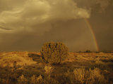 A Rainbow Appears as a Storm Approaches a Sagebrush-Covered Mesa Photographic Print by Paul Damien
